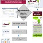 Facebook Timelines for Business Infographic